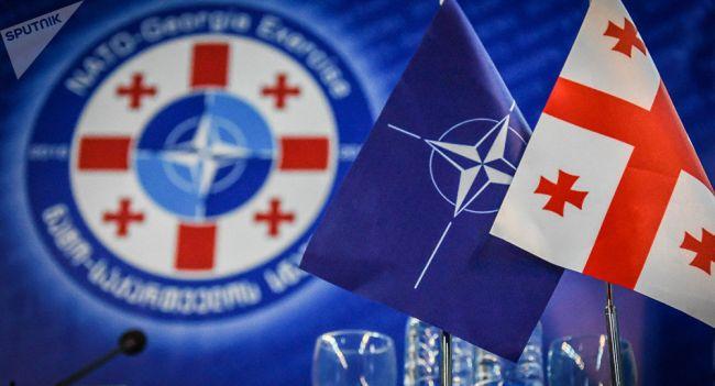 Грузия никогда не вступит в НАТО — оппозиционный политик — Новости  политики, Новости Европы — EADaily
